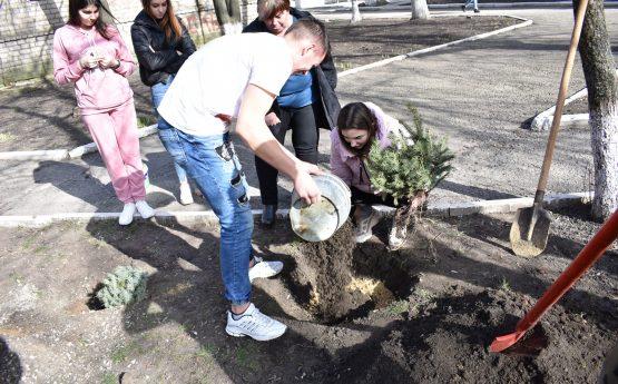 Посади дерево — врятуй планету