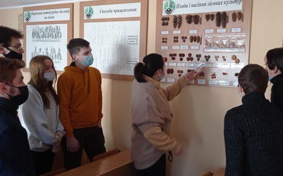 Навчальна практика майбутніх фахівців лісового господарства