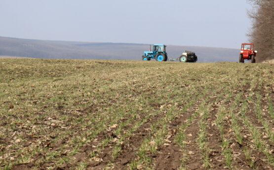 Фундамент для сучасного агробізнесу